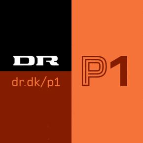 dr-p1